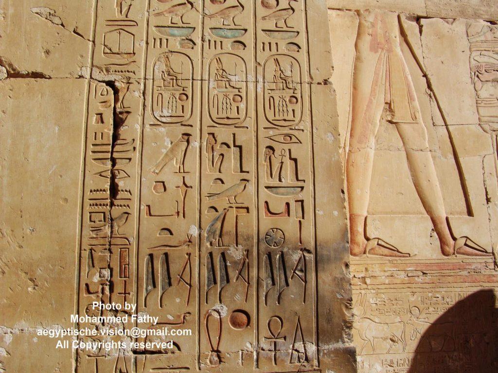 Temple of Ramses (23)