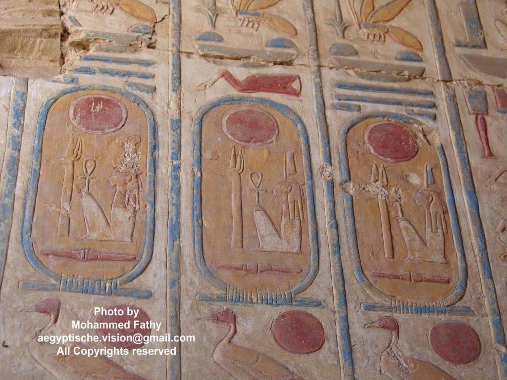 Temple of Ramses (41)