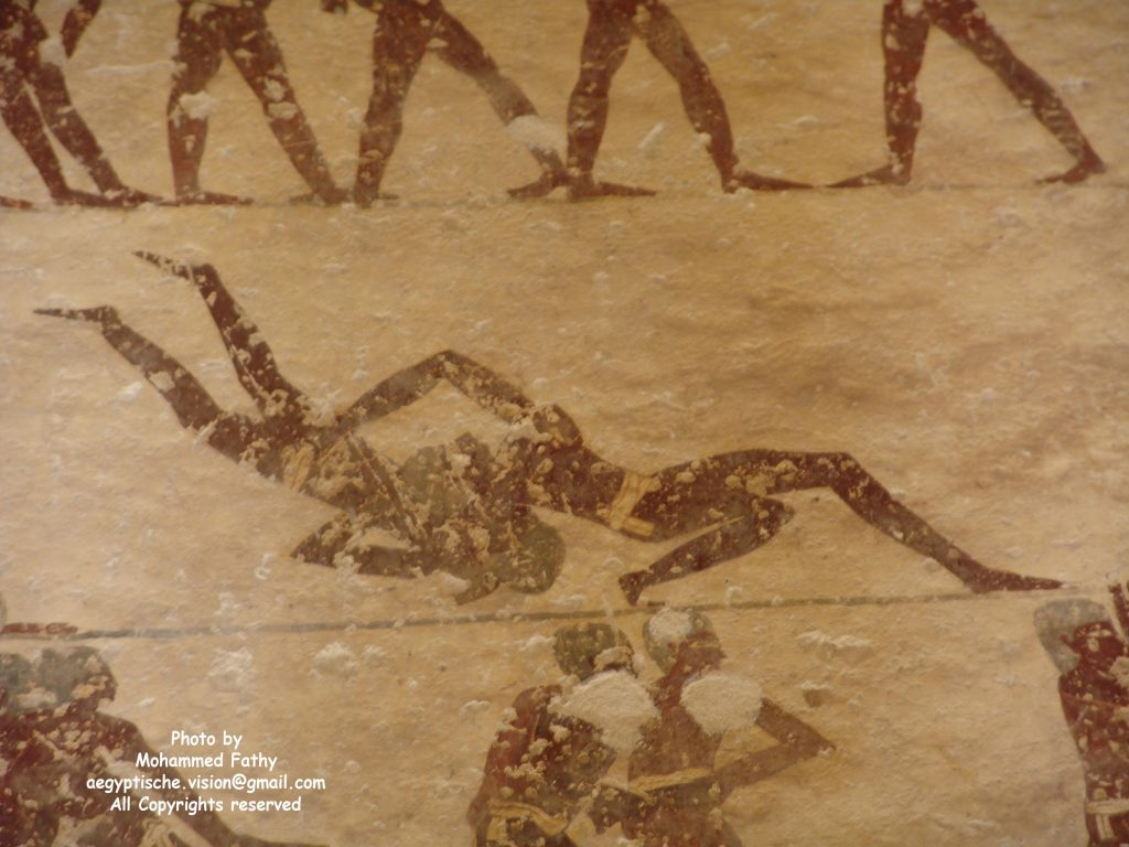Tomb of Amnemhat (8)