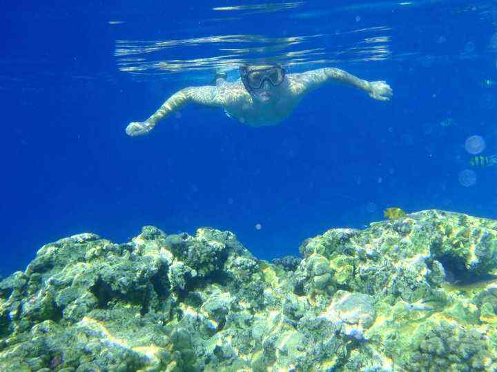 UTOPIA ISLAND SNORKEL1