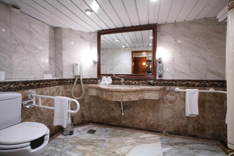 Handicap-bathroom1 (2)