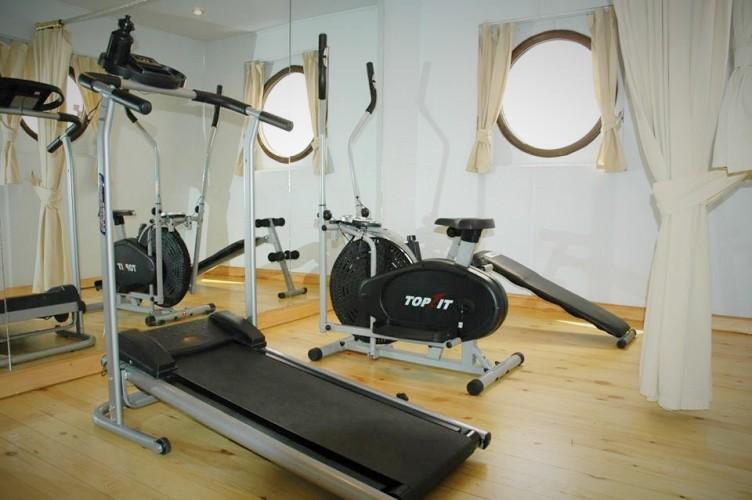 Nile Dolphin Sport Gym